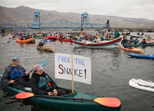 About 350 people came out last year for the Free the Snake Flotilla to oppose four dams on the river. (Free the Snake Flotilla)