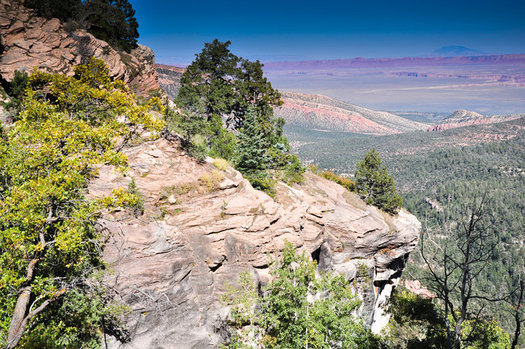 The Greater Grand Canyon Watershed is vital to the Colorado River, which is the lifeline for millions in cities across the Southwest. (Jessica Pope)