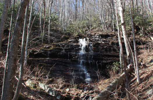 The Southern Appalachian Highlands Conservancy maintains Laurel Ridge Preserve, which adjoins Asheville Watershed land. (SAHC)