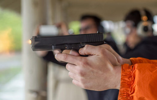 Tennessee doesn't require background checks for private sale of firearms and receives a failing grade from the Law Center to Prevent Gun Violence. (Peretz Partensky/flickr)