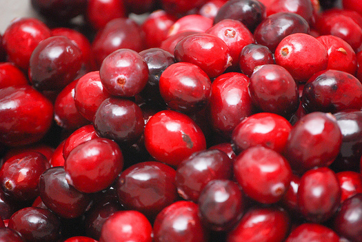 Cranberries may be a good source of vitamin C, but experts say they aren't useful for treating urinary tract infections. (Steve Johnson/Flickr)