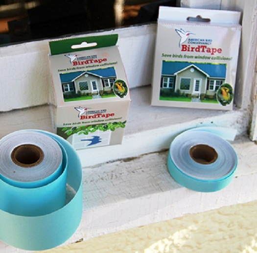 Products such as BirdTape are inexpensive ways to prevent collisions into home windows. (abcbirds.org)