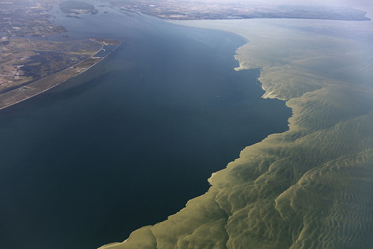 Algal blooms in Lake Erie threaten drinking water, lake health and local economies. (Aerial Associates Photography, Inc. by Zachary Haslick/NOAA/Flickr)