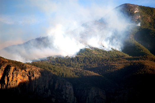 A new report shows more fires such as the Monument Fire in 2007 are in store for Arizona as a result of climate change. (cohdra/Morguefile)