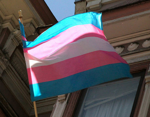 "The judge found ""absolutely no support"" for claims that service by transgender people negatively affects the military. (torbakhopper/Flickr)"