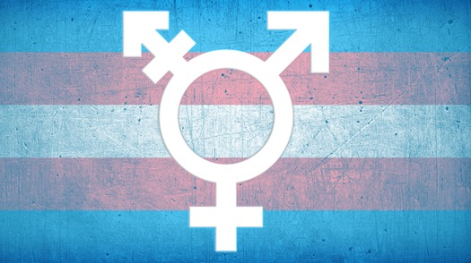 "The judge found ""absolutely no support"" for claims that service by transgender people negatively affects the military. (Dustin Perry/JBSA)"