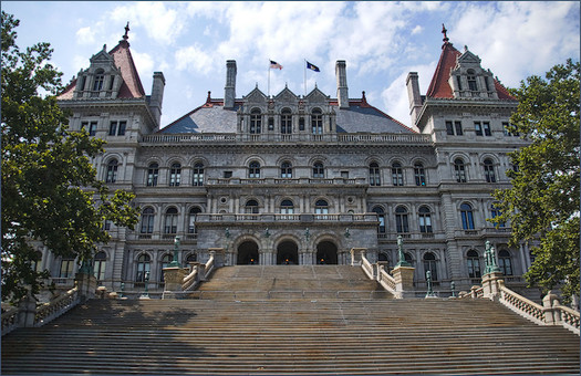 Every 20 years, New Yorkers can vote for or against holding a state constitutional convention. (Ron Cogswell/Flickr)