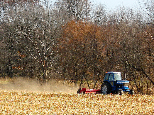Since 2008, grasslands, pasture and forest in Wisconsin have been cleared for corn and other feedstock production related to the ethanol mandate. (Michael Mooney/Flickr)
