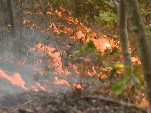 Wildfires and the cost of fighting them often are considered a western problem, but 14 people died in a 2016 fire in the Great Smoky Mountains. (National Park Service)