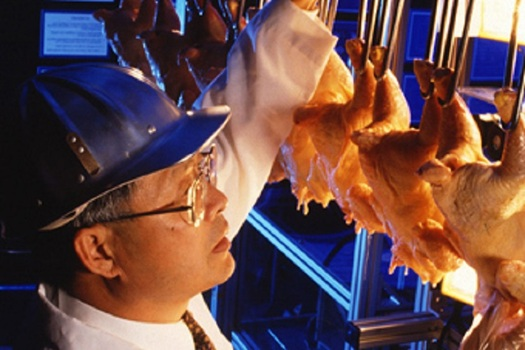 The poultry industry is proposing to speed up the production lines at chicken processing plants in Arkansas and other states. (USDA)