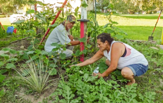 The Santee Sioux tribe in Nebraska is creating community gardens and other access points for local foods. (CFRA)