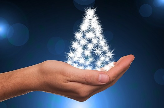 The price of Christmas trees is expected to increase by as much as 10 percent this year. (Pixabay)