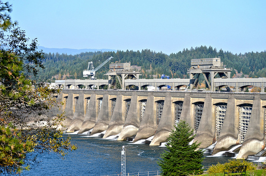 Bonneville Dam is one of many in the Columbia River basin. (Colleen Benelli/Flickr)