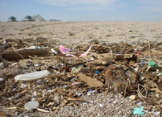 Shoppers can help reduce plastic waste in the Great Lakes by skipping plastic. (noaa.gov)