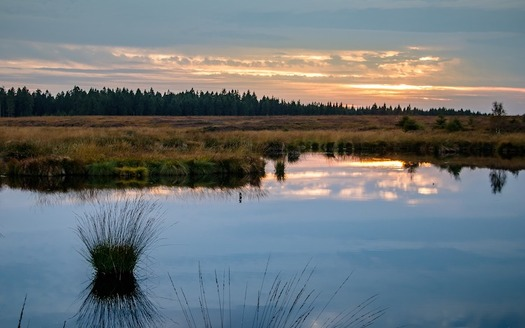 The Clean Water Rule clarifies which streams and wetlands are protected by the Clean Water Act. (herbert2512/Pixabay)