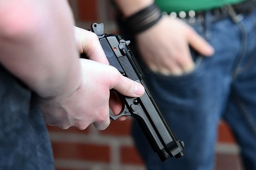 The Florida Dept. of Agriculture says less than 1 percent of all gun-purchase applicants are denied a license because a background check could not prove they were eligible. (Pixabay)