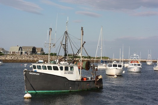 From fishing to recreation, New Hampshire's coastal waters play a major role in the state's economy.  (ckaras/Pixabay)