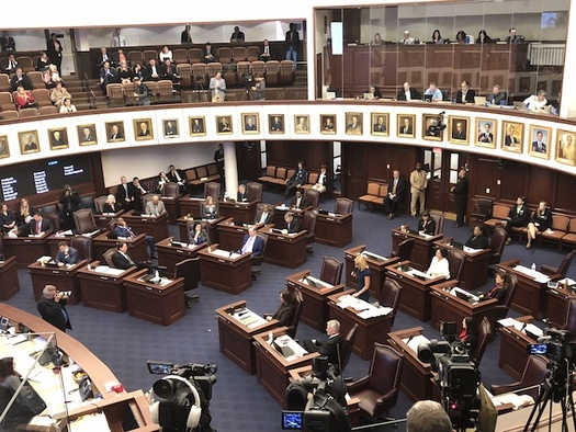 The Florida Senate debates SB 7026, established in response to the tragedy at Marjory Stoneman Douglas High School. (Trimmel Gomes)