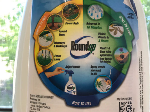 Roundup is the most common pesticide in the world. Some studies have linked it to cancer, while many others have declared it safe. (Chris Thomas)