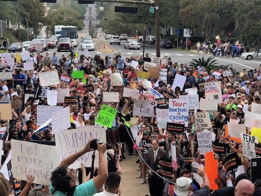 Thousands of students rally against gun violence at the Florida state Capitol in Tallahassee following the mass shooting that killed 17 at Marjory Stoneman Douglas High School in Parkland, Fla.  (Trimmel Gomes)