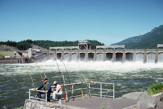A federal court has mandated that dams in the Columbia River Basin increase spill for salmon four times since 2005. (U.S. Forest Service/Flickr)