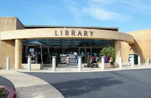 A new report shows a connection between local government investment in public services such as libraries. housing or parks and improved health outcomes in the community. (Pixabay)