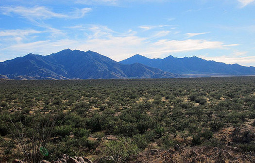 The Santa Rita Mountains, south of Tucson, have cultural significance to Native American tribes. They also contain major untapped copper deposits. (Heather Zozaya/Flickr)