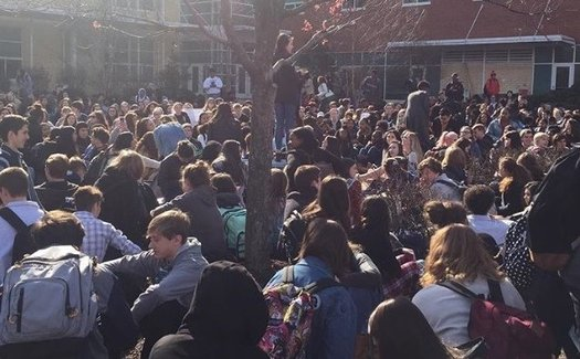 Students walked out of Millbook High School on March 14, but several teens at the school have decided action can't end with their walkout. (Riley Yates)