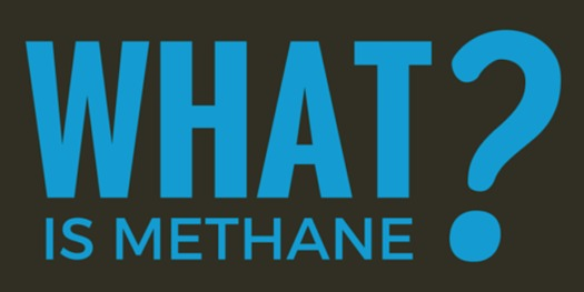 It's estimated that methane leaks at oil and gas drilling sites waste $100 million annually in New Mexico. (sanjuancitizens.org)