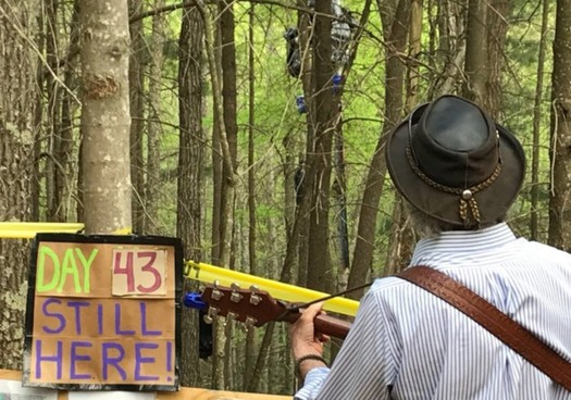 Folks who want to resupply a protester blocking the Mountain Valley Pipeline say the Forest Service is keeping them 125 feet from the tall pole she occupies. (Appalachians Against Pipelines)