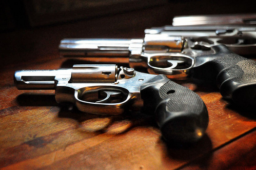 Nearly two dozen states are considering risk-based firearm-seizure laws such as Indiana's. (Rod Waddington/Flickr)