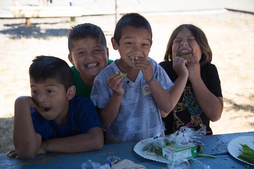 Los programas veraniegos de comidas gratuitas están ayudando a las familias, que gastaban $300 extra en comida cuando no hay clases. (School's Out Washington)