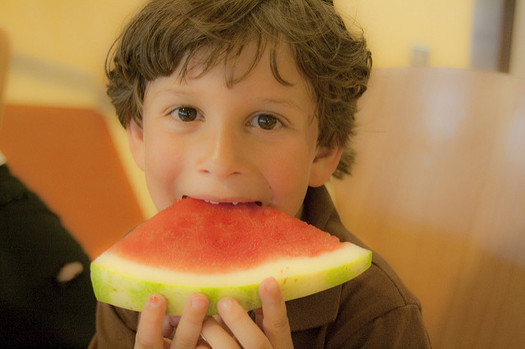Summer Nutrition Programs offer free summer meals to all Kentucky children, ages 18 and younger. (Riley Kaminer/Flickr)