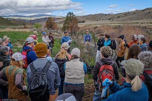 Restoration projects in Oregon's high desert include tree plantings along John Day River tributaries. (Jim Davis/Oregon Natural Desert Association)