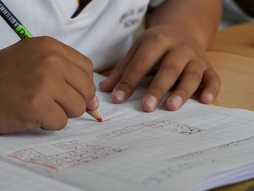 Census figures affect funding for Head Start, special education and affordable child care, so getting an accurate count is critical. (lourdesnique/Pixabay)