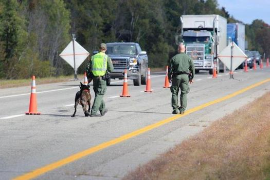 U.S. Border Patrol agents from the Houlton Station operated an immigration checkpoint on Interstate 95 last week. (Customs and Border Protection)