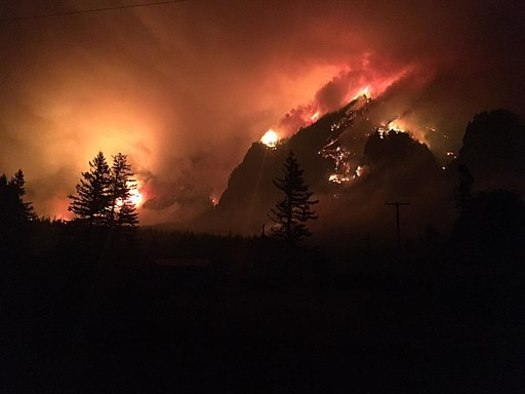 According to the National Fire Protection Association, fireworks cause nearly 18,500 fires annually, including the giant Eagle Creek fire in Oregon last year that ended up destroying 48,000 acres. (U.S. Forest Service)