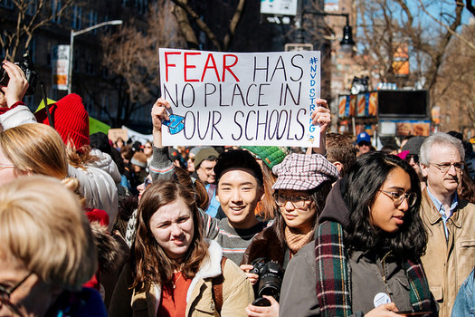 Supporters of gun reform rallied at March for Our Lives events around the country in March. This summer's Road to Change tour aims to keep up momentum around the issue. (Mathais Wasik/Flickr)
