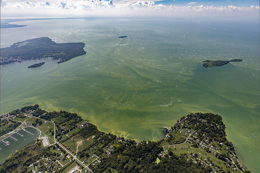 The Western Basin of Lake Erie is a hot spot for annual algae blooms. (NOAA)