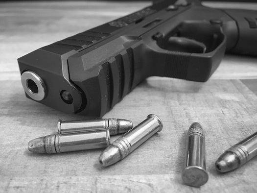 Illinois is now one of 13 states with a �red flag� law on the books, which allows firearms to be temporarily confiscated when a judge determines people are dangerous to themselves or others. (Carrie Martinez/Twenty20)