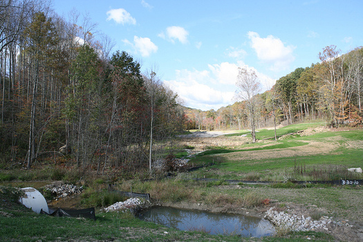 The Land and Water Conservation Fund has protected access to places such as Ohio's Wayne National Forest. (U.S. Forest Service)