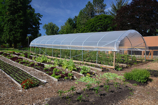 Local food advocates hope to lengthen Nebraska's growing season by installing more high tunnels. (USDA)