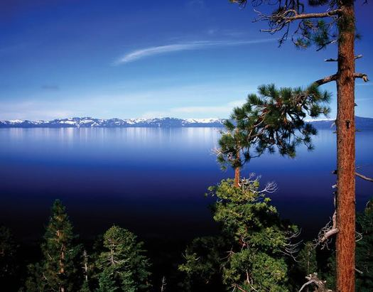 Restoration efforts at Lake Tahoe are among tens of thousands of California projects made possible over the years by the Land and Water Conservation Fund. (Tahoe Regional Planning Agency)
