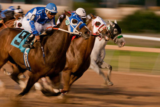 Idaho lawmakers overturned historical horse-racing terminals in 2015 because of their resemblance to slot-machine gambling. (Mark Bonica/Flickr)