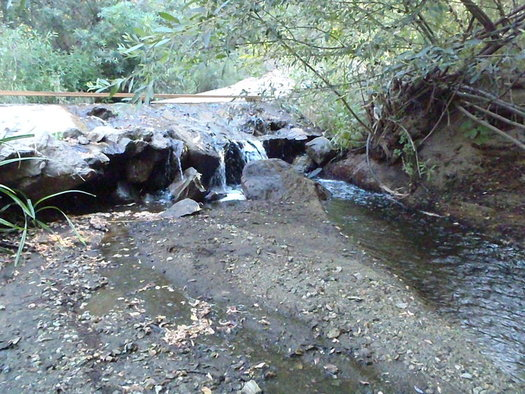 The joint project addresses erosion and sediment issues that still affect wildlife in the Angles National Forest. (SWCA Environmental Consultants)