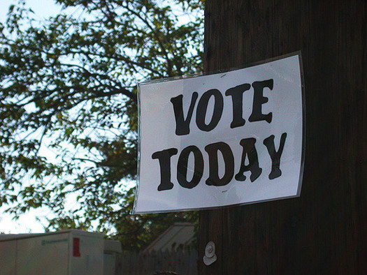 Early voting begins today in North Carolina for the November midterms, and runs until Nov. 3. (Marcia Cirillo)
