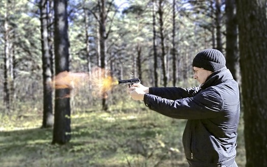 Current federal law bars people convicted of a felony from having a firearm. (satellitov/Pixabay)