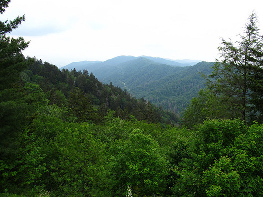 The Great Smoky Mountains are part of an International Biosphere Reserve helping to absorb carbon emissions. (Ken Lund/Flicker)
