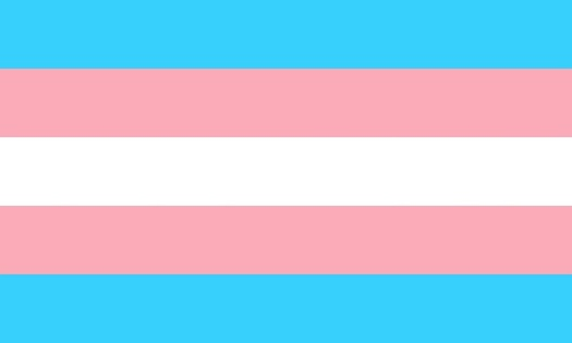 About 70 percent of Massachusetts voters supported preserving the state's transgender nondiscrimination law. (katlove/pixabay)