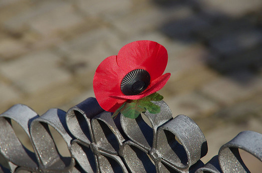 Armistice Day, also known as Poppy Day and Remembrance Day, was renamed Veterans Day in 1954. It is observed on Nov. 11 to recall the official end of World War I. (sasastro/Flickr)